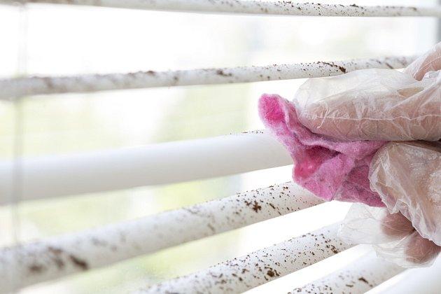 Na mastnotu a viditelné nečistoty použijte vlhký hadřík se saponátem nebo octem.