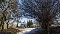 Dřín (vpravo od cesty) poblíž kostela sv. Jiří na Hradišti v Libušíně.