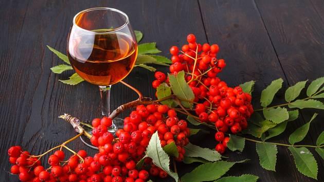 Domácí víno můžeme vyrobit z nejrůznějších plodů.