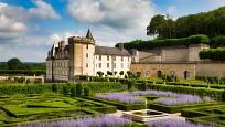 Zámecké zahrady Château de Villandry zdobí bohatě kvetoucí perovskie.