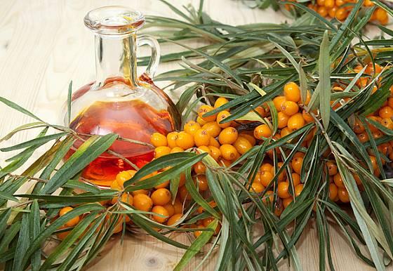 Rakytník lze vyluhovat v olivovém oleji