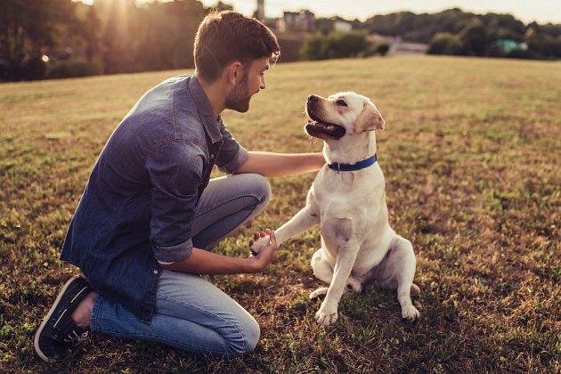 S takovými plemeny se obvykle nenudíme na žádné procházce, protože tito psi rádi komunikují.