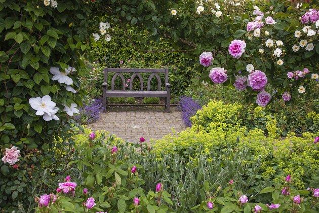 Růže spolu s plaménkem vykouzlí romantické zákoutí na každé zahradě