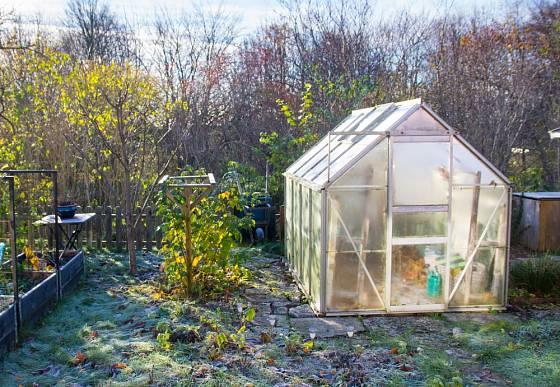 Skleník nám výrazně pomůže rozšířit pěstitelskou sezónu.