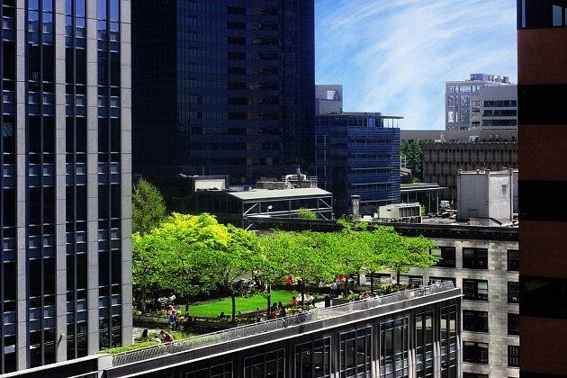 Stromky jsou přímo na střechu sázeny málokdy - kvůli vysoké zátěži je lepší dát je do truhlíků.