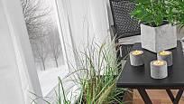 Puklice napadají pokojové rostliny nejčastěji v zimě