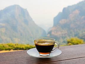 Potřebujete rychle zhubnout pár kilo a milujete kávu?