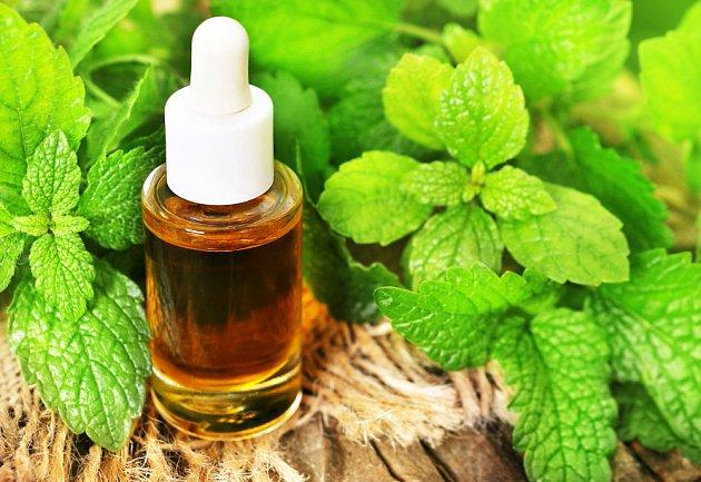 Meduňkový esenciální olej.