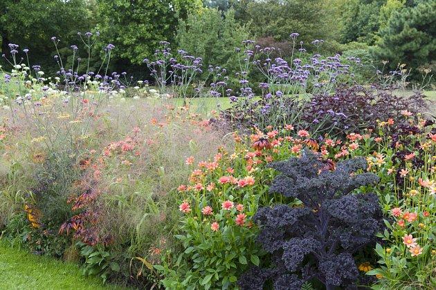 Originální kombinace trvalek, okrasných trav a fialové kadeřavé kapusty