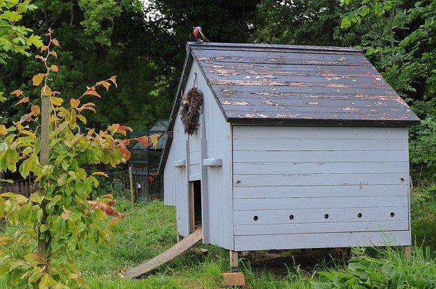 Prostorný kurník může mít podobu domku