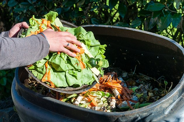 K vyhazování organického materiálu slouží speciální kontejnery nebo skládky