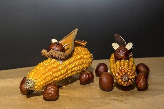 Kaštaňák 2019 - kukuřičný klas, kaštany, dýňová seminka