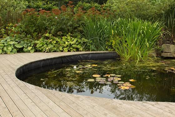 Jezírko, živý klenot každé zahrady