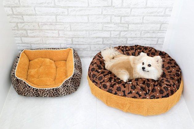 Pelíšku pro malé psy je na trhu největší výběr.