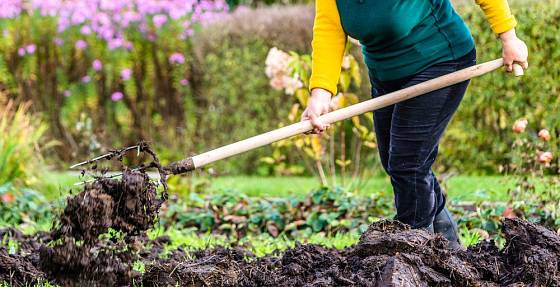Organické hnojení zkvalitní všechny typy půd včetně těch těžkých