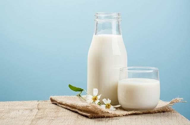 Osvědčeným domácím prostředkem proti padlí je postřik z mléka.