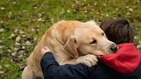 Dítě se péčí o psa učí odpovědnosti.