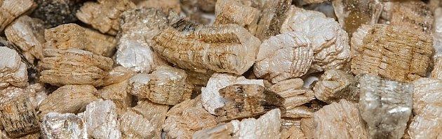 Detail vermiculitu