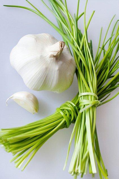 Česnekse řadí mezi vytrvalé byliny.