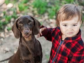 Říká se, že jezevčíci nejsou příliš vhodní k malým dětem.