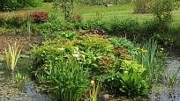 Pohled na vodu v zahradě přináší zvlášť v létě důležité osvěžení.