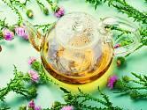 Vyzkoušejte čaj z ostropestřce mariánského. Očistí vaše játra!