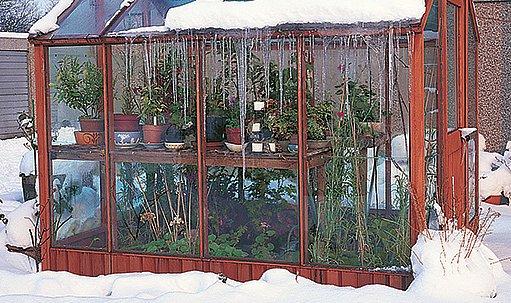pěstování rostlin i v zimě