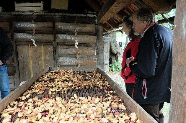 sušírna jablek