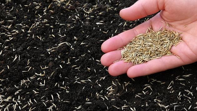 Ruční výsev travního semene je vhodný pouze na malé ploše.