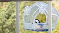 Lehké plastové krmítko s přísavkami se připevní ke sklu okna