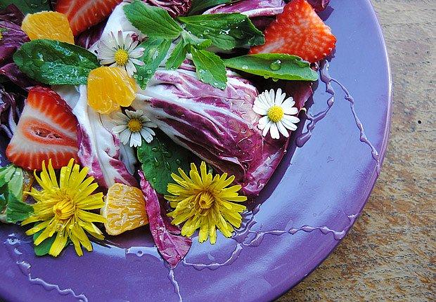 Letní salát se sedmikráskami