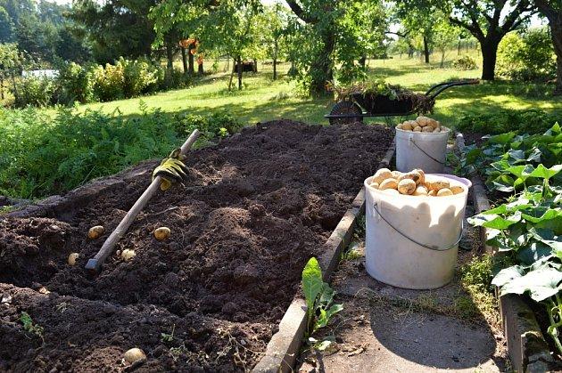 I malá plocha může dát velkou úrodu
