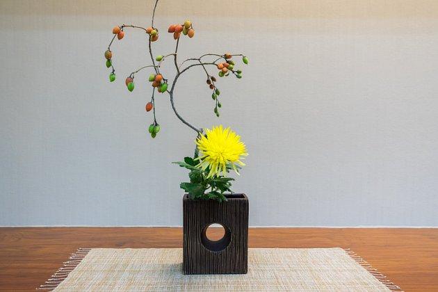 Asymetrické uložení rostlin má za cíl prezentovat přirozenost typickou pro živou přírodu.