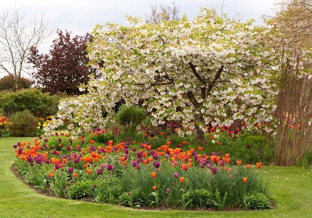 Zaoblené záhony jsou dobrou volbou pro malé zahrady.