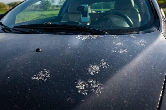 Na autě může napáchat velké škody