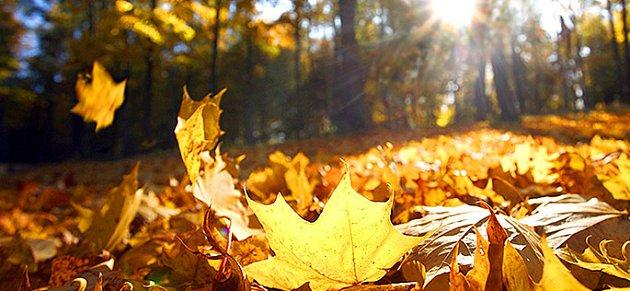 Podzim může potěšit krásou