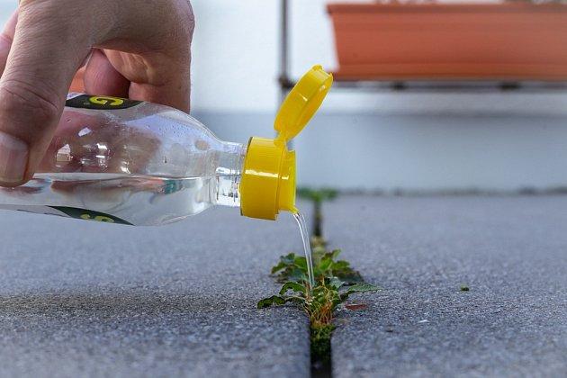 S likvidací plevele ve spárách může pomoci i obyčejný ocet.