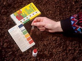 Kyselost půdy si můžeme změřit sami