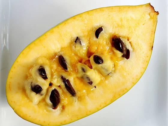 Semena z plodů muďoulu před konzumací vyjmeme