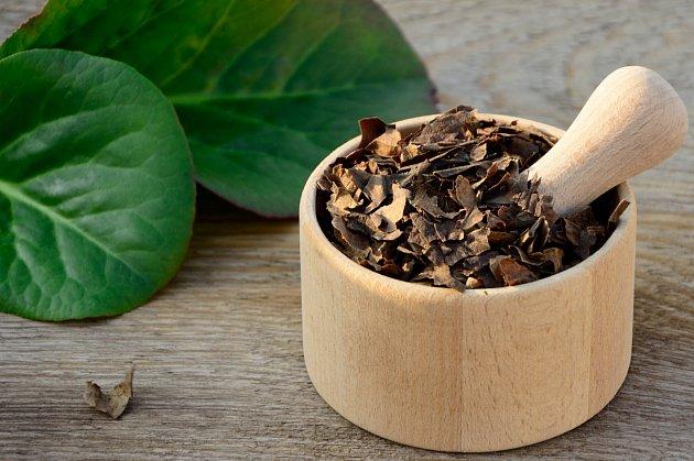 Sibiřský či mongolský čaj jsou názvy rostliny, kterou známe jako bergénii.