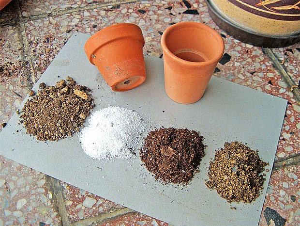 Složky substrátu: rašelina, perlit, kompost, zahradní zemina
