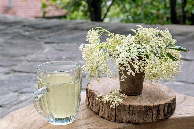 Bezinkový sirup je nejen zdravý, ale osvěžující nápoj.