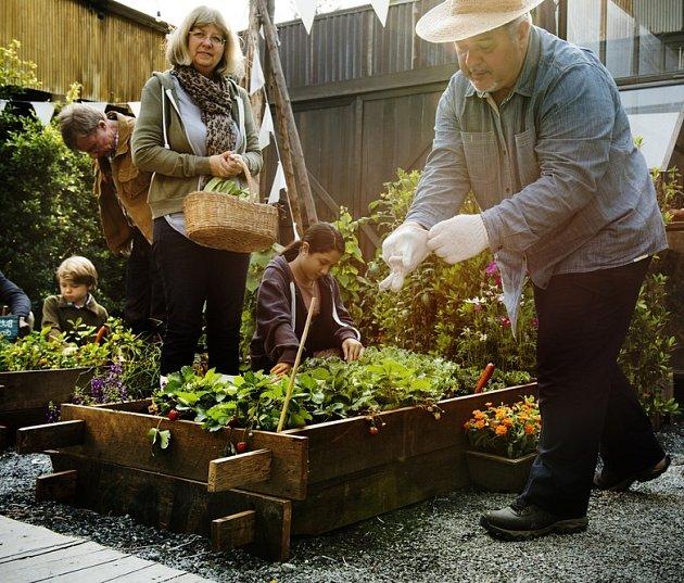 Komunitní zahrady jsou místem sektávání u společné práce a zábavy