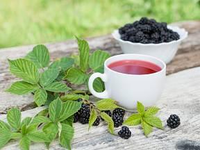 Čaj můžeme připravit také z listů ostružiníku.