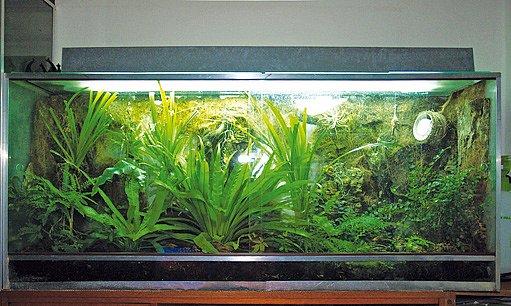 osvětlený mini skleník