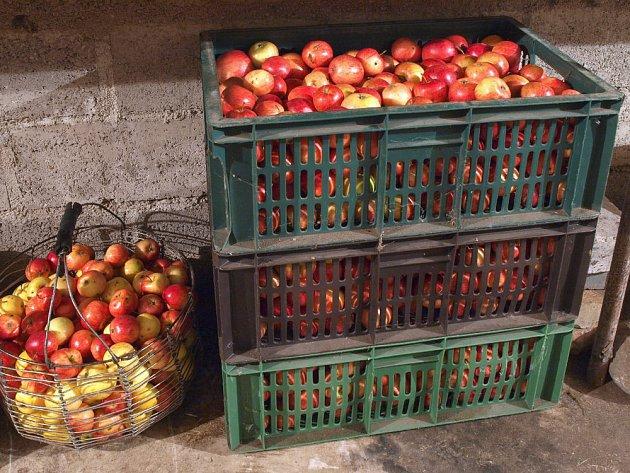 Jablka bychom neměli skladovat ve vysokých vrstvách.