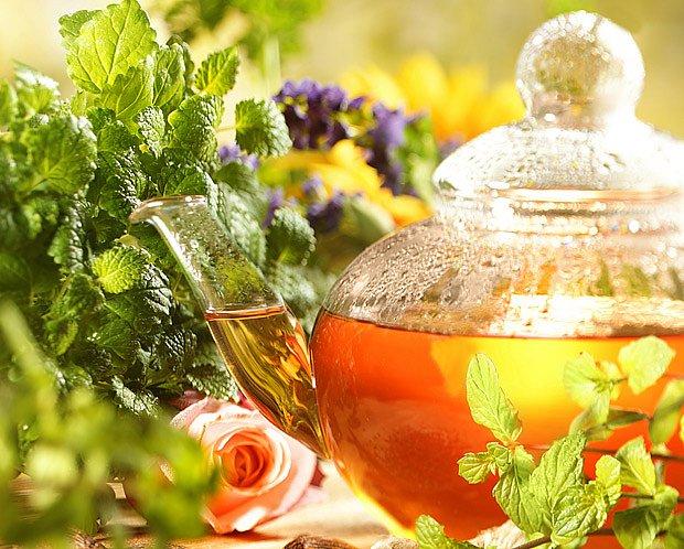 Čaj lze připravit z čerstvých i sušených bylin