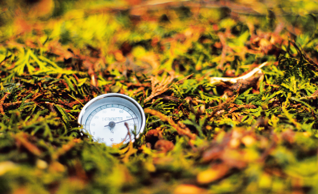 Teplotu v kompostu lze měřit teploměrem se sondou