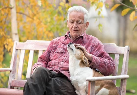 Kam se člověk hne, tam ho jeho pes následuje. Tak se pozná pravá láska.