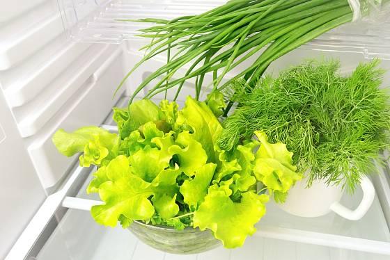 Salát vydrží déle čerstvý v chladničce.